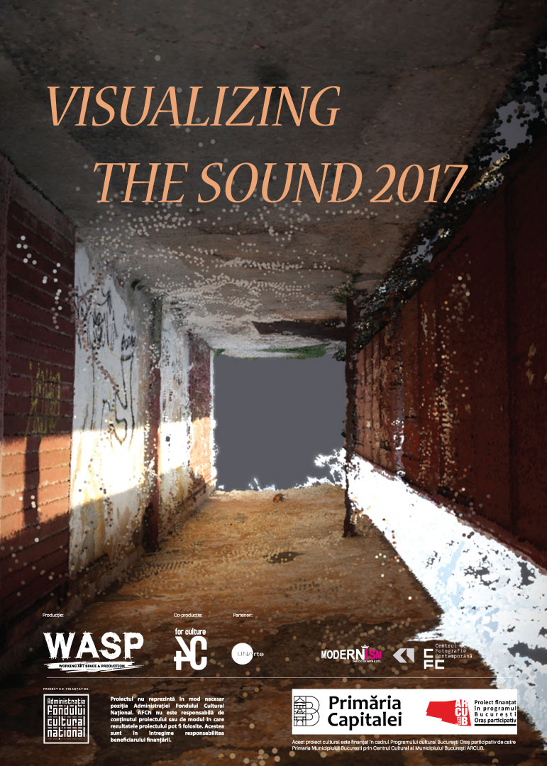 Visualising-the-sound-2017